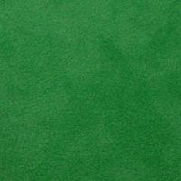 Photo of Emerald fleece fabric