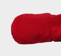 Enclosed mitten